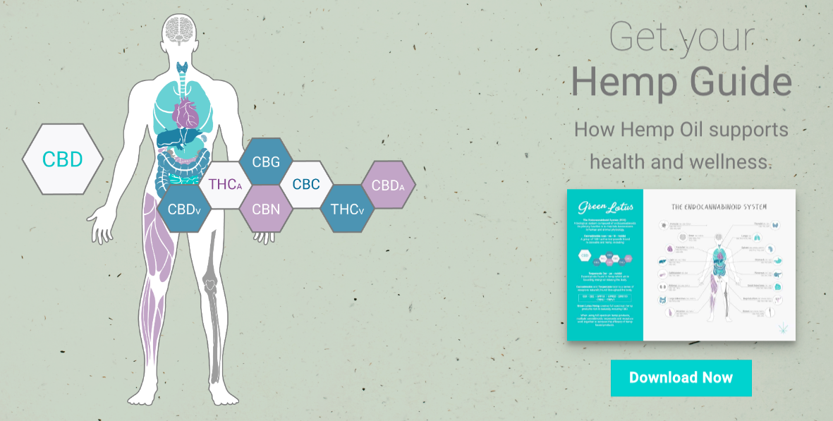 Hemp Guide Green Lotus